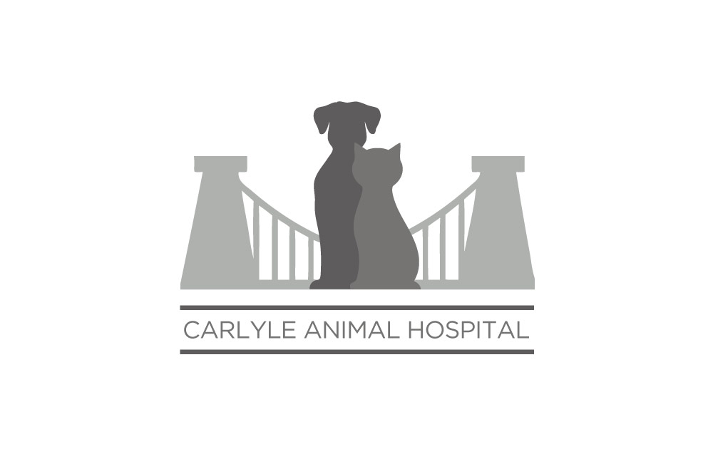 Carlyle Animal Hospital - Logo Design